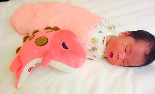 赤ちゃんの寝かしつけに苦労しているママ必見!かわいい音響玩具