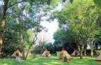 シルバニアファミリーの仲間入り⁉︎ ファンタジーの森でお泊まりキャンプ開催