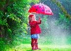 雨の日が楽しくなりそう!慣れてない子どもにもおすすめの傘