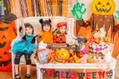 子ども達のテンションが爆上がりしそう!10月開催のハロウィンイベント
