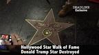 """セクハラ被害者のために…トランプ大統領の""""星""""を破壊した男に有罪判決"""