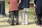 「在職年金」「介護費用」…家庭別でみる年金受給マニュアル