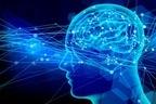 """8つの""""脳番地""""をバランスよく鍛えれば脳は死ぬまで衰えない"""