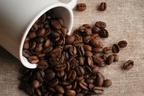 相性◎!減量効果が期待できる「お茶×コーヒー」の組み合わせ