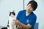 『旅猫リポート』トレーナーが教える「猫のイタズラ防止策」
