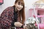 殺処分ゼロ願う中川翔子「保護猫カフェで猫と出会いを!」
