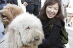 浅田美代子 愛犬ファースト決断で購入した白亜の2億円別荘