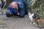 「見て見ぬふりできない」30年保護猫活動続ける男性