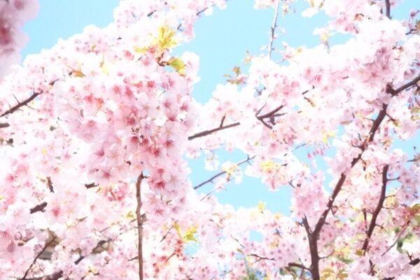 上野千鶴子の東大祝辞が「意義深い」と話題、トレンド入りも