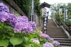 大嘗祭の前に参拝したい「白山神社」が令和にもたらす効果