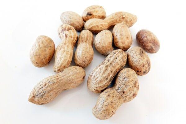 慶大教授語る「ピーナッツ」効果、生活習慣病リスク低下も