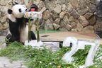 パンダ界のビッグダディ 子だくさんの秘訣はレディファースト
