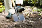 宝くじ100万円当せん者が見た「土を掘る夢」の意味とは