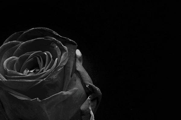 松潤と大野が二宮結婚に無言貫く理由 ケジメ尊重も胸中複雑か