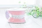 歯科医勧める「歯ぐきマッサージ」リンパの流れ整える効果