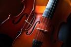 モーツァルトの音楽が免疫力向上に寄与?医学博士が解説