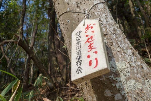13年ぶり時代劇 丸山隆平「主人公の逃げ足は自分に似ている(笑)」