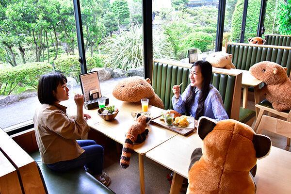 静岡県伊東市「森のどうぶつレストラン〜ギボン亭〜」(伊豆シャボテン動物公園内)