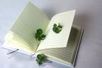 中島健人×平野紫耀「交換日記で2人の距離が縮まりました」