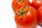 トマトの保存は上向きか下向きか?栄養にまつわる2択クイズ