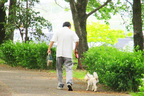 「犬を飼う」「仕事を続ける」医師が実践する認知症の予防習慣