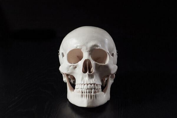 視力の低下の一因に「頭がい骨」のゆがみ…専門家が指摘