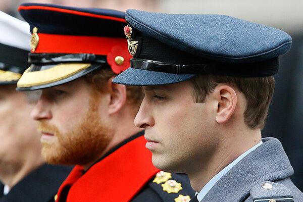 2015年のリメンブランス・デー(戦没者追悼式典)には、2人の王子は並んで参列していた(写真:AP/アフロ)
