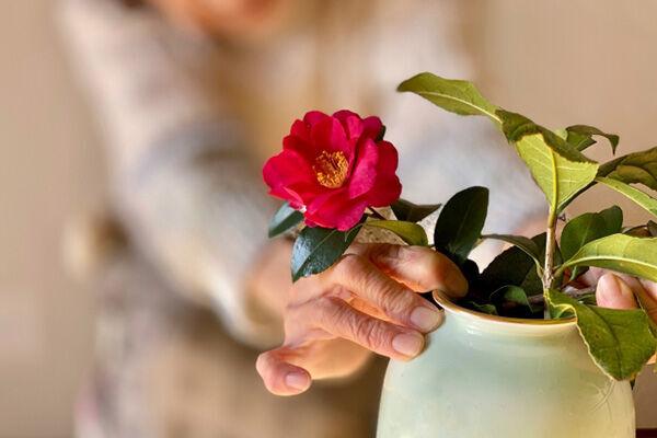 一生賃貸派が急増!高齢者でも入居できる賃貸住宅の見つけ方