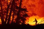 花火のせいで山火事が発生…夫婦が過失致死罪に問われる