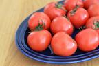 糖度11度以上!甘い「夢のトマト」北陸・富山の厳選食材