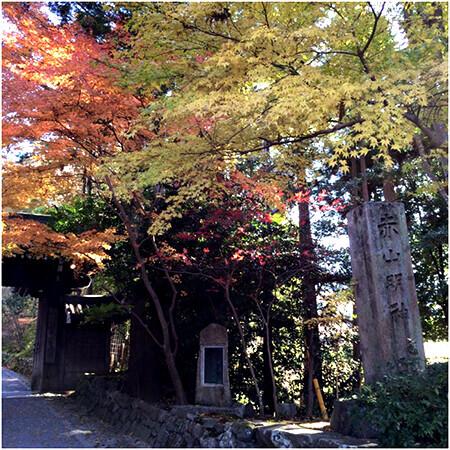 ふらり京都ひとり旅。ゆったりと紅葉を楽しめる穴場スポット