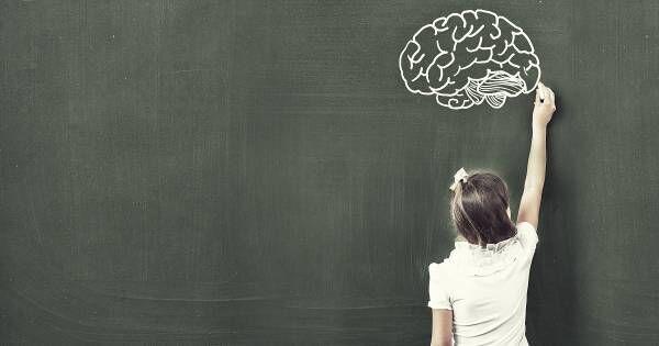 記憶力の要は「記憶の仕方」にあり。親が知っておくべき「記憶の脳科学」