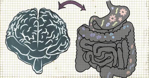 """""""第二の脳"""" を整える「腸活」をはじめよう! 子どものやる気や好奇心を高める食べ物とは?"""