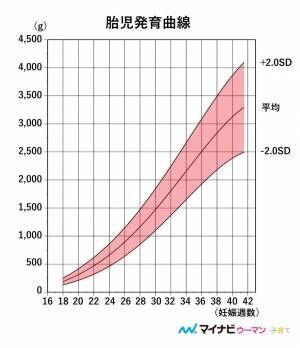 【医師監修】胎児の大きさの調べ方は?測定方法と発育の目安、考えられるトラブル