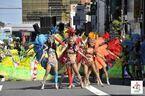 夏の終わりを締めくくるラテンのリズム!「第38回浅草サンバカーニバル」