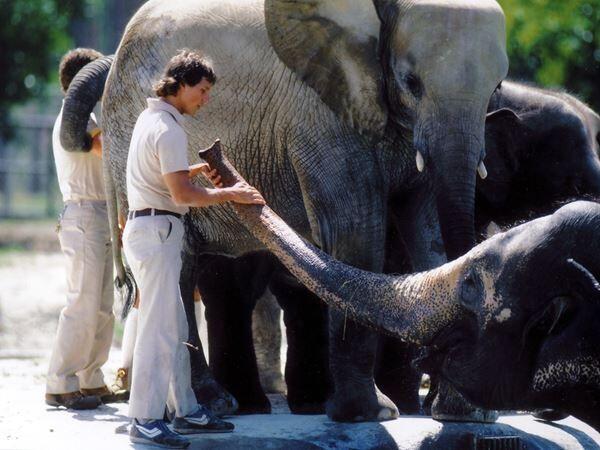 『動物園』