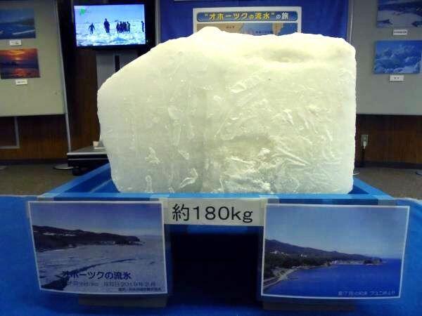 オホーツクの流氷展