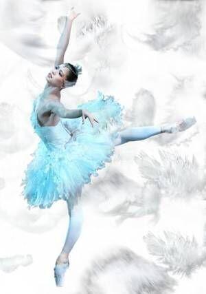 熊川哲也 Kバレエ カンパニー『白鳥の湖』 (c)Shunki Ogawa