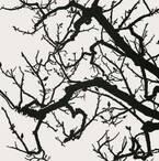 「傷ついた風景」から見える「明日」とは? 国立新美術館『DOMANI・明日展』開催