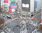 東京の本質を好奇心で見つめ直す 100人の写真作家によるプロジェクト『東京好奇心 2020 渋谷』開催