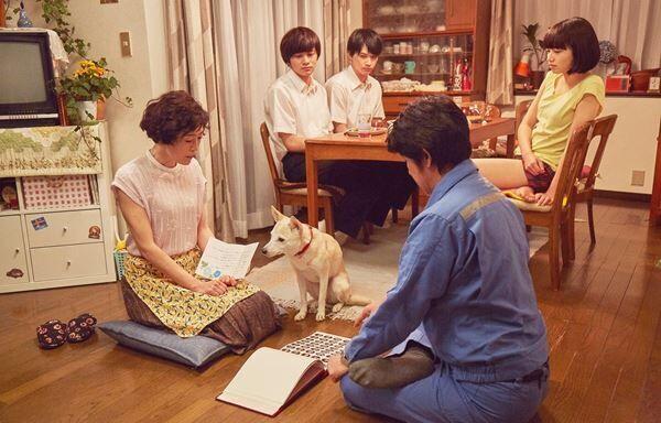 『さくら』 (c)西加奈子/小学館 (c)2020「さくら」製作委員会