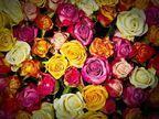 【心理テスト オススメ映画】花束に添えられたメッセージとは?