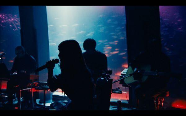 ヨルシカ「春泥棒」「花人局」(『ヨルシカ Live「前世」』より)サムネイル画像