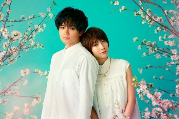 Netflix映画『桜のような僕の恋人』