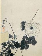 明治から昭和まで駆け抜けた、田中一村の画家人生を追う 「田中一村展 奄美へとつづく道」が5月に開催