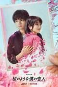 中島健人×松本穂香『桜のような僕の恋人』Netflix配信日が2022年3月24日に決定 ティザー予告&ティザーアートも