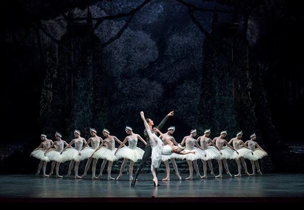 吉田都監督がダンサーたちとじっくり創り上げるライト版『白鳥の湖』で幕開け 新国立劇場バレエ団2021/2022ラインアップ