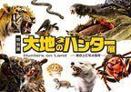 さまざまな捕食者(ハンター)の起源と進化を紹介する『大地のハンター展』  人気コミック『BEASTARS』とのコラボも!