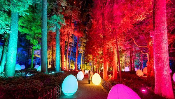 「チームラボ 偕楽園 光の祭」