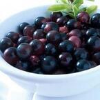 microdiet.netレポートより、美容や健康にいいといわれる「アサイー」ってどんなフルーツ?